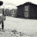 Em Busca de Graciliano Ramos: uma viagem a Palmeira dos Índios