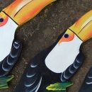Sobre aves piciformes de bico grande e oco – Fernando Dourado